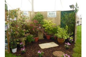 Dene Clatworthy – Landscaping & Garden Objects