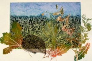 Lynn Bailey – Print Maker